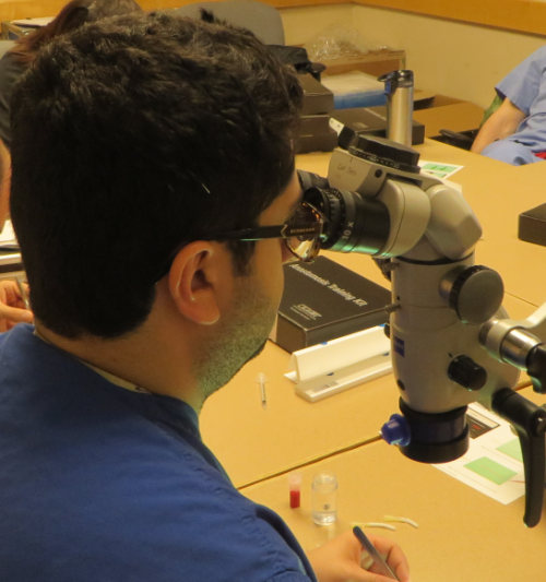 Neurosurgical Grants and Fellowships for Residents, Fellows